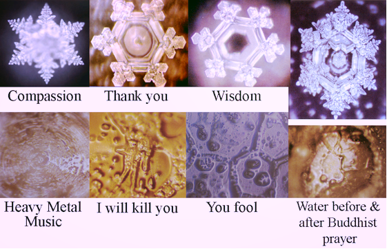 Water crystals from Masaru Emoto's vibrational frequency experiments.