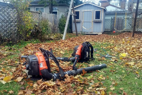 Seasonal Cleanup - TLC like leaf removal, debris clean up, weeding and more.$55 / Hour / Person