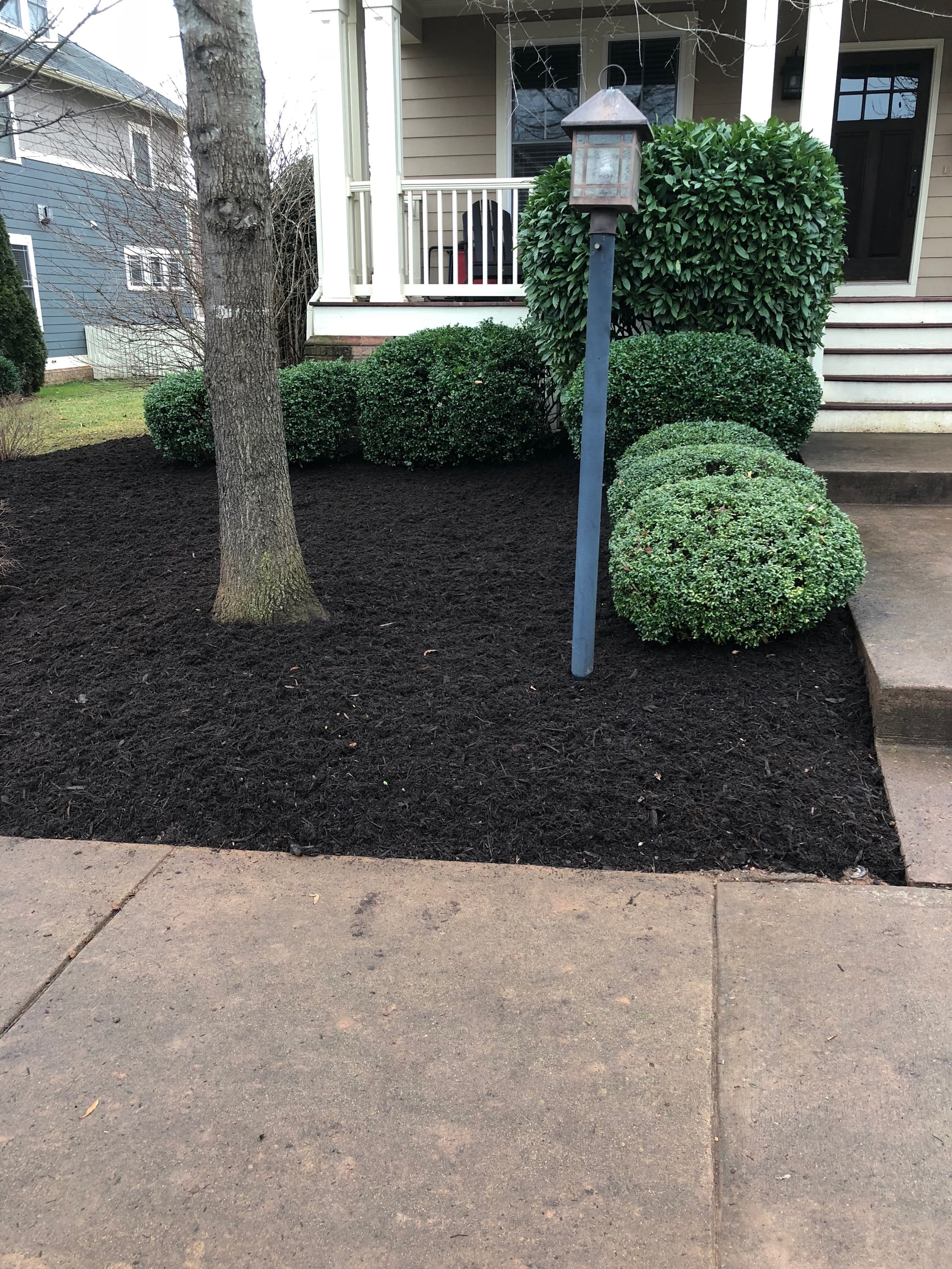 new-mulch-bed
