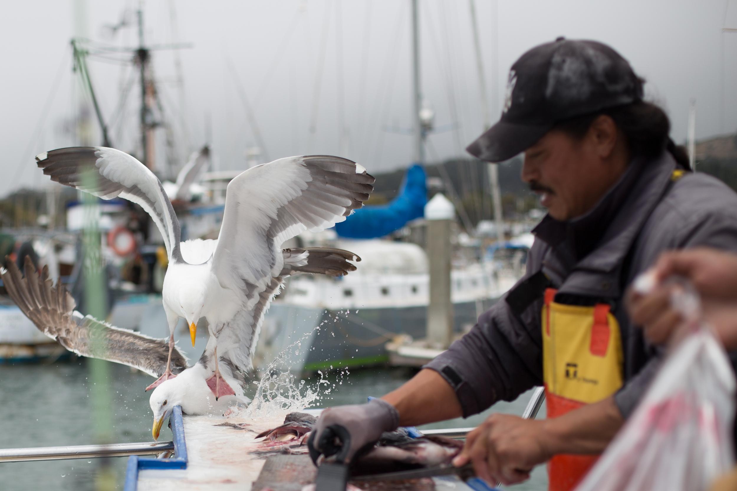 Fishing-88.jpg