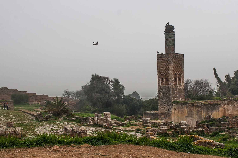 Morocco-34.jpg