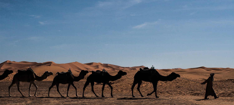 Morocco-130.jpg