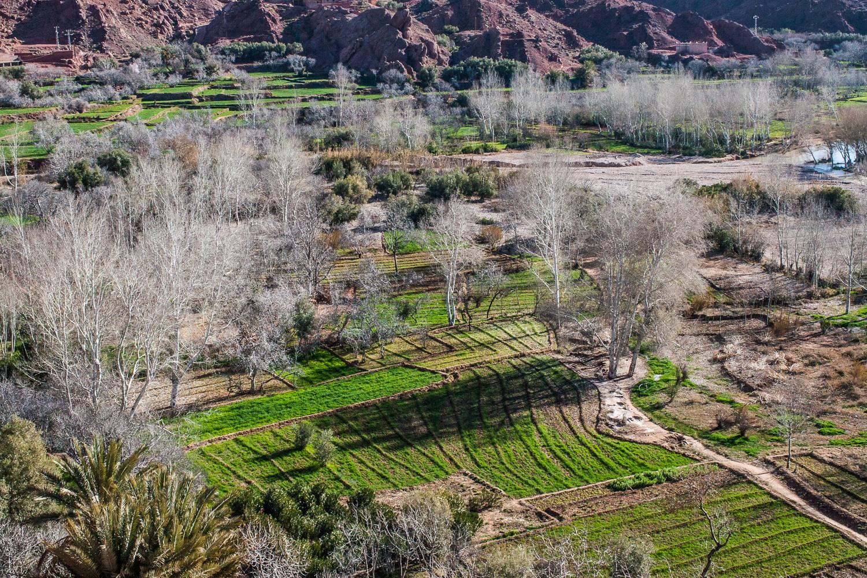 Morocco-174.jpg