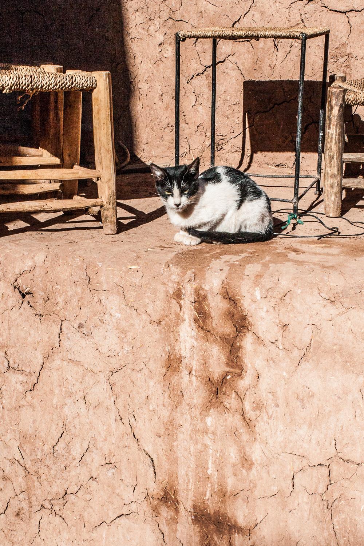 Morocco-186.jpg