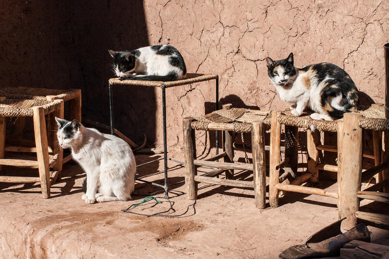 Morocco-187.jpg