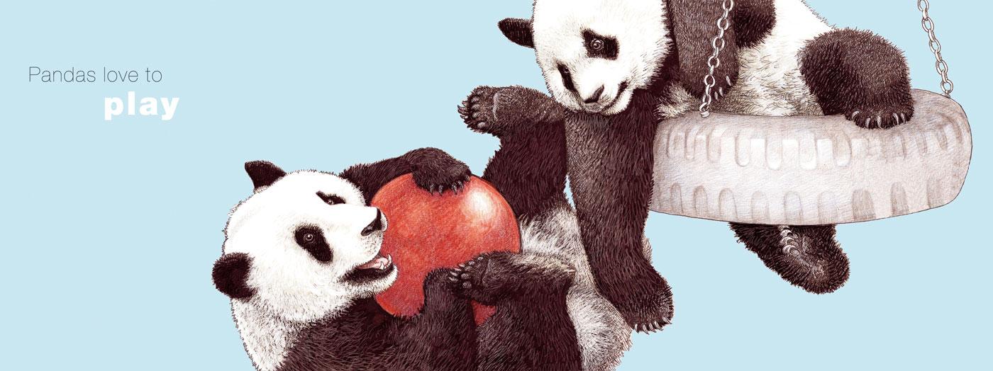 Pandas Play