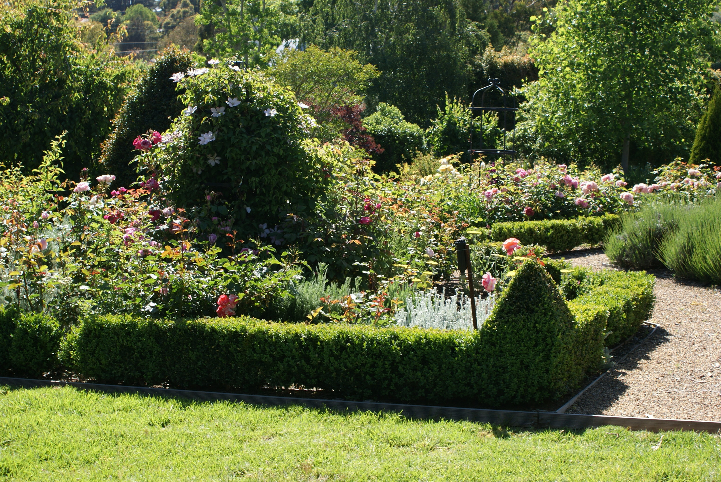 garden at mt. lofty
