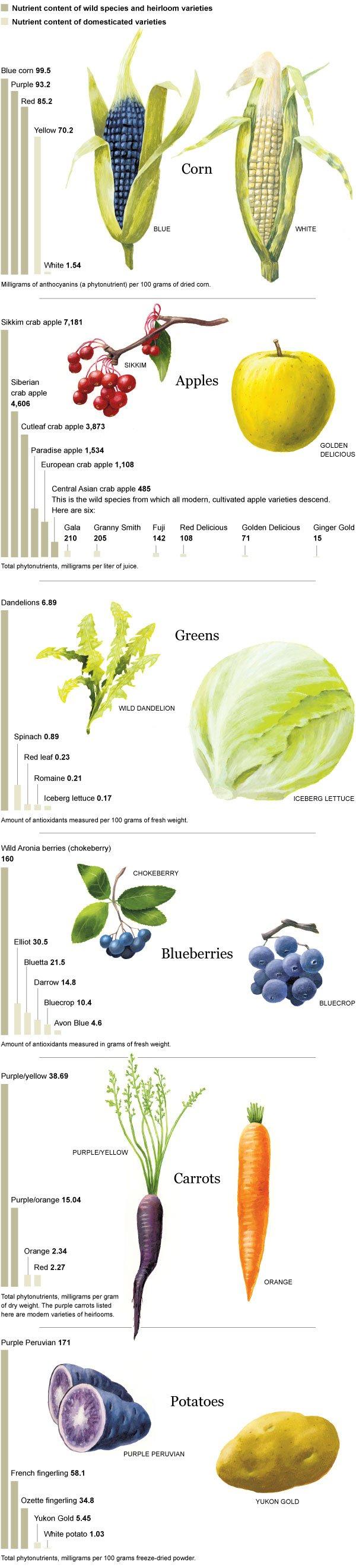 nutrition analysis.jpg