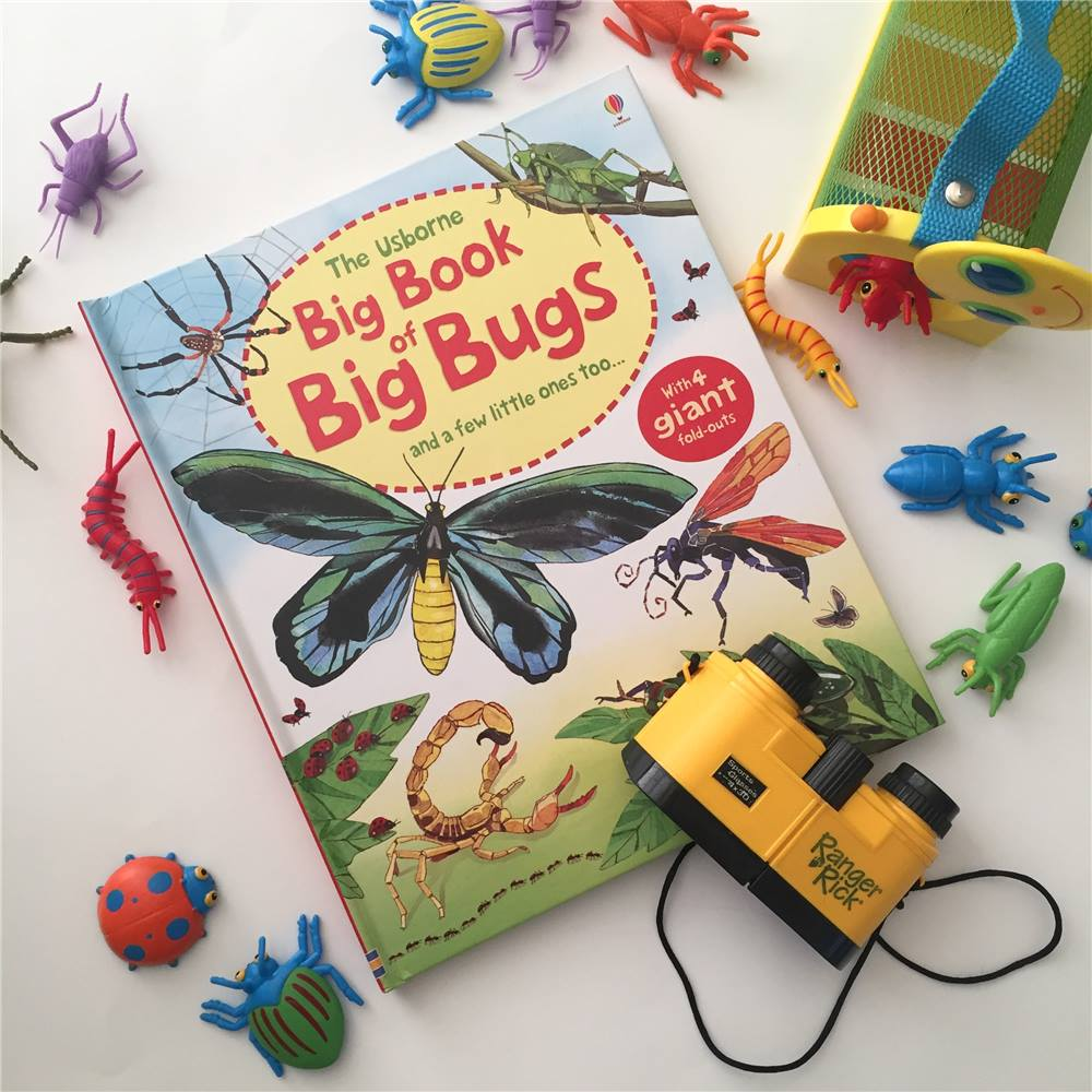 Amazing stick bugs the length of your arm and spiders as big as a plate?!? have a kid fascinated with bugs in your life? The Big book of bugs features fold out pages with gobs of information about insects.   After reading together, Go for a scavenger hunt outside, and see what types of bugs you see. Talk about what you find. Does it look like anything in the book? How many legs does it have? Does it jump/fly?    Find the big book of bugs here