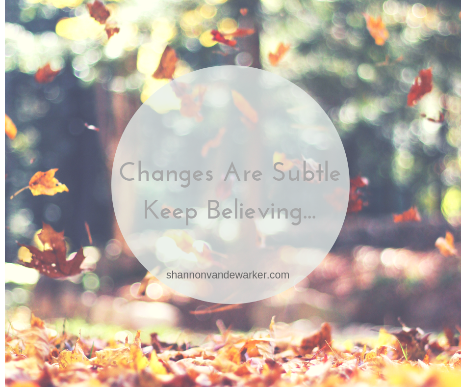 Changes Are Subtle Keep Believing....png