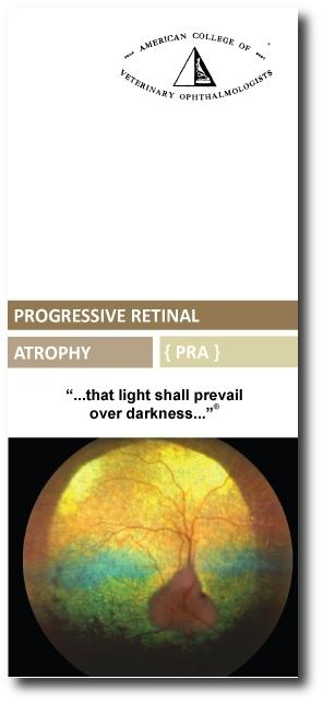 ACVO-PRA-brochure with shadow.JPG