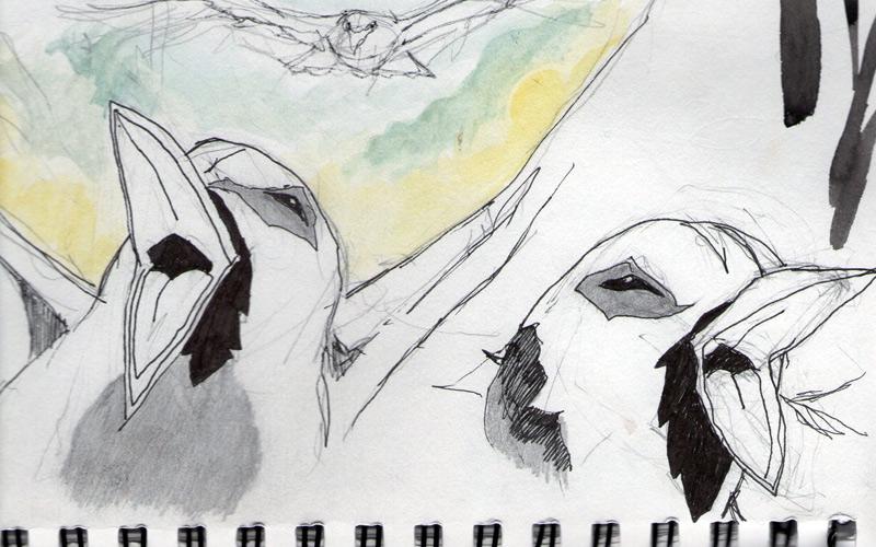 birdfly2.jpg