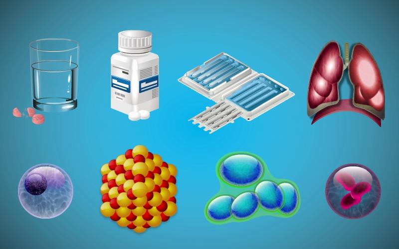 Flash_Illustration_Examples4.jpg