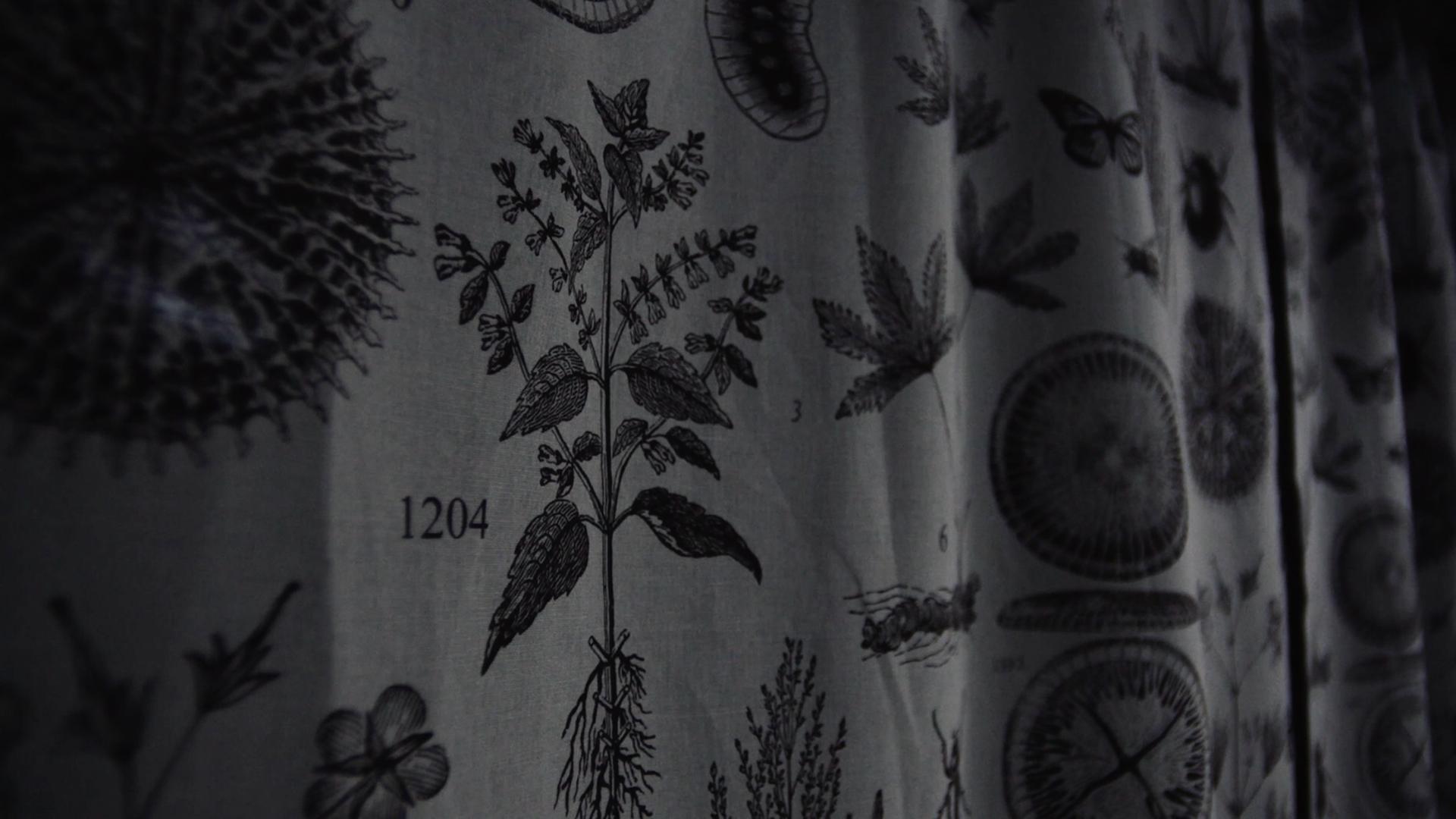 Curtain Dark.png
