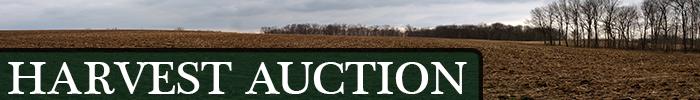 TLT_Auction_button.png
