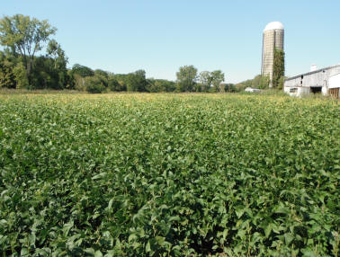 365 acres located in Moorefield & Pleasant Twps,.  Clark County. Donated 2011.