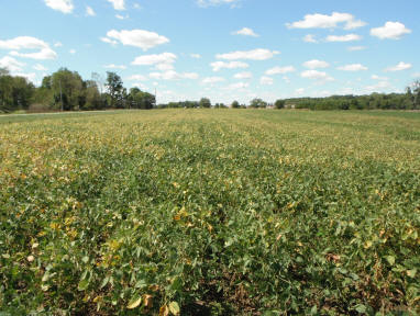 120 acres in Union Twp, Champaign County.  Donated 2007