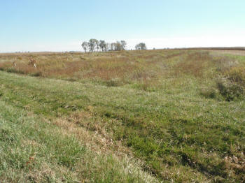 463 acres located in Paint Twp, Madison County.  Donated 2007.