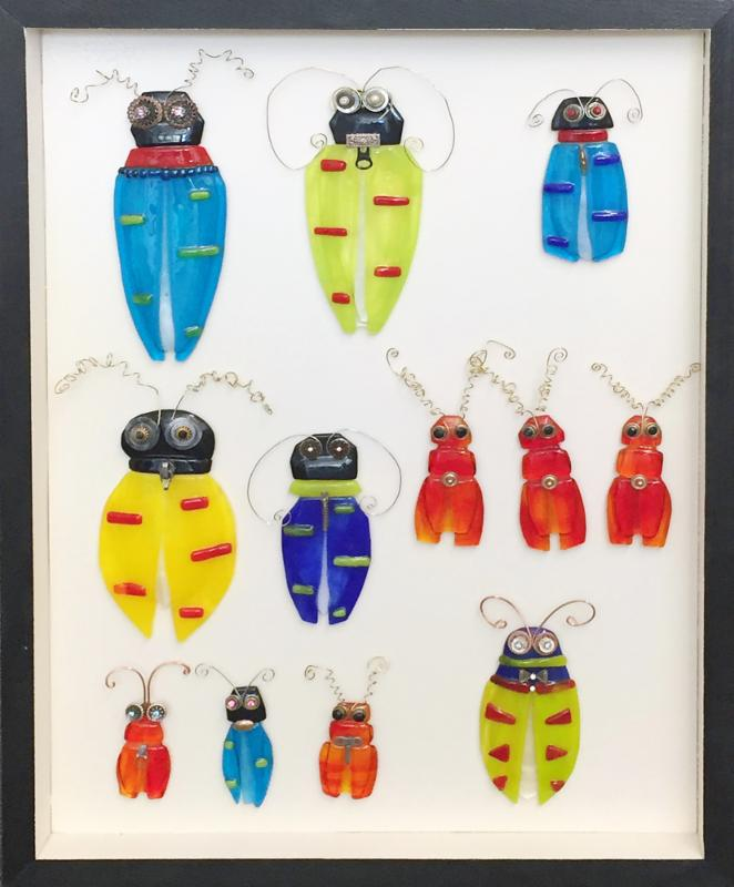 Insecta-Hexapoda-Brilliancy