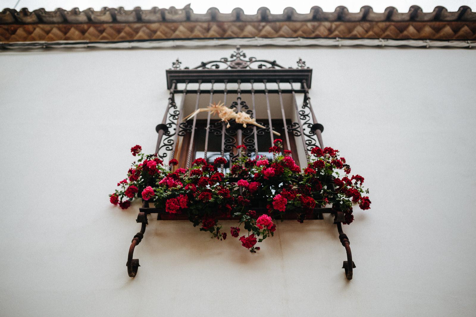 Spain 20170350.jpg