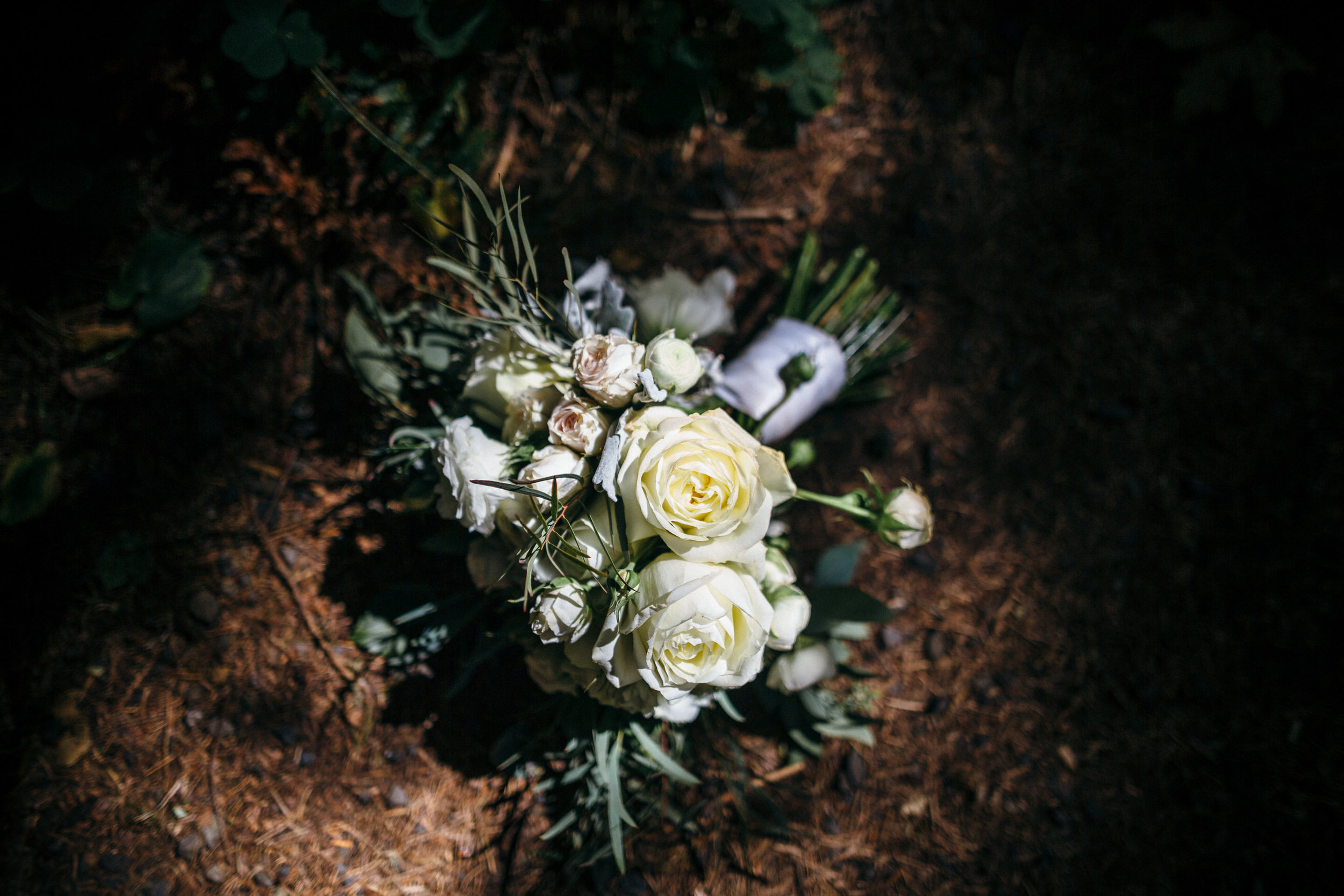MT Hood Wildwood elopement wedding oregon portland photography0077.JPG
