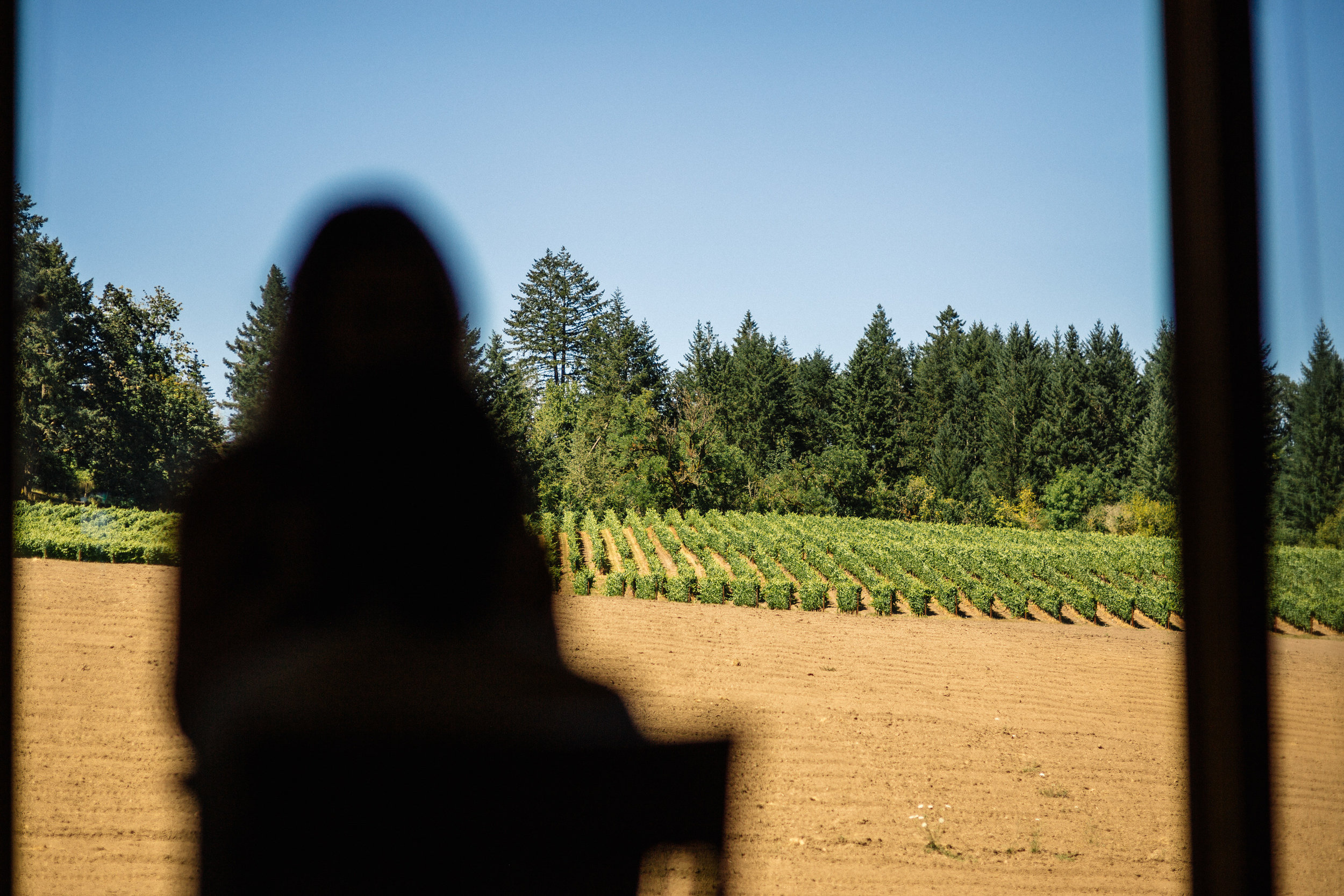 Beacon hill winery wedding photographer Oregon destination000.JPG