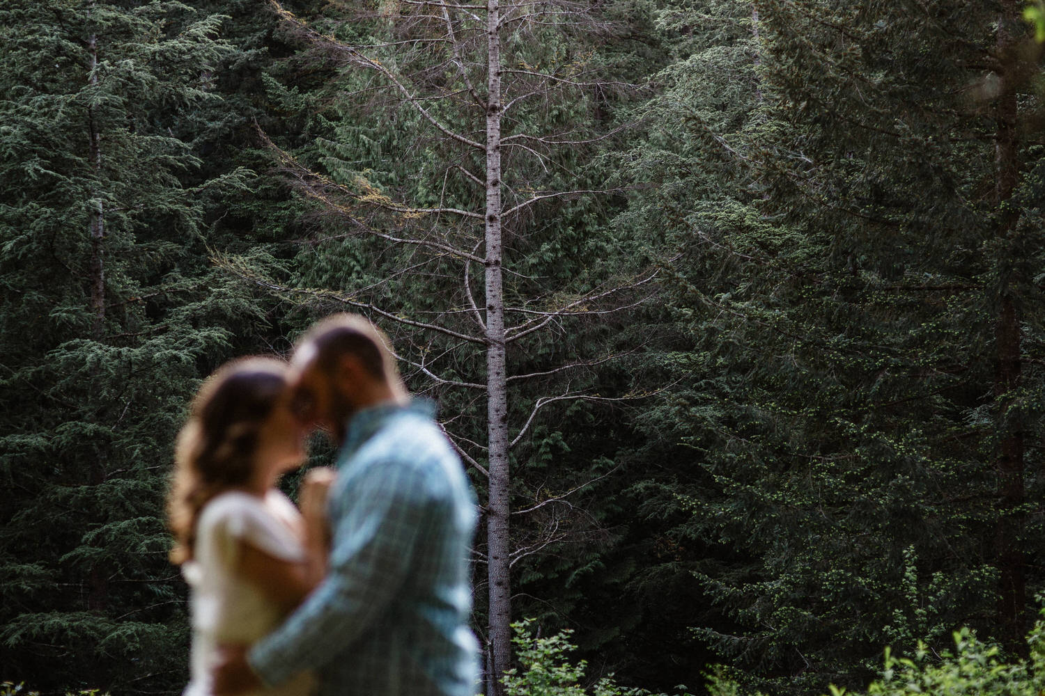 Hoyt Arboretum Engagement session photography Portland oregon 0006.JPG