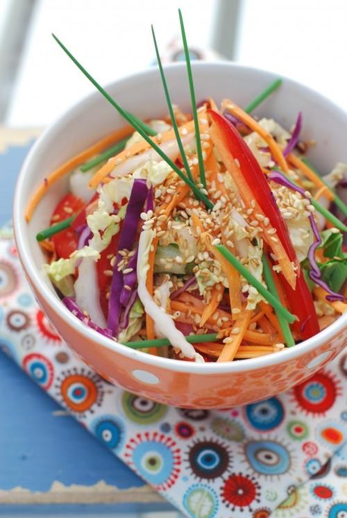 Napa Cabbage Salad_C.F.-05.20.13.jpg