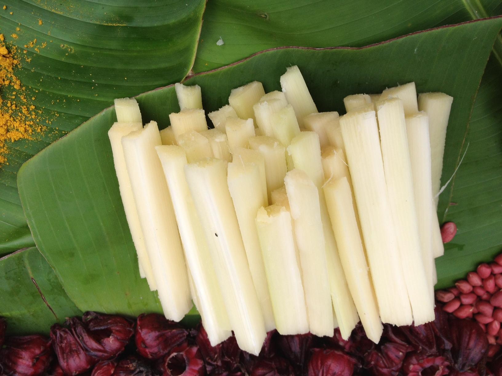 sugar-cane (1).JPG