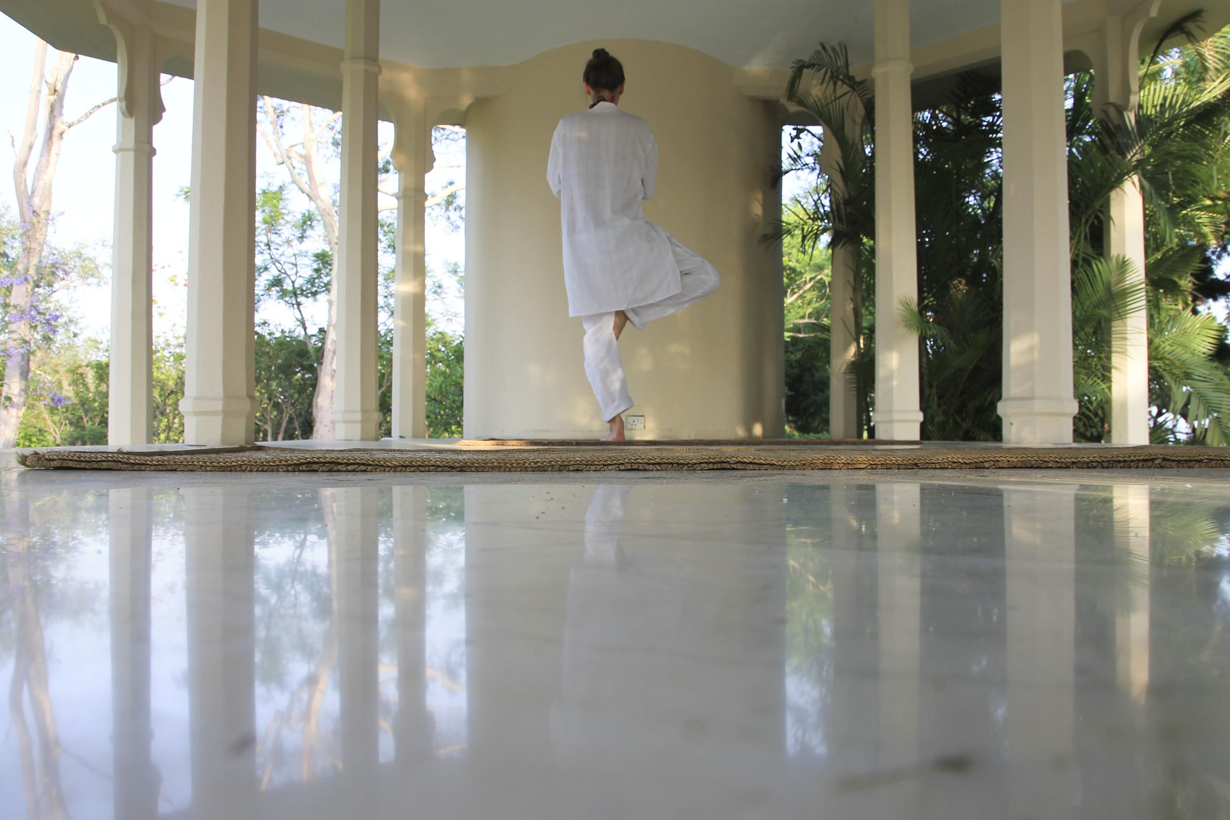 special ananda spa himalaya ayurveda yoga1846.jpg