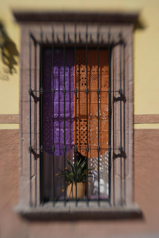 Papel Picado en Ventana (Papier mache flags in window)