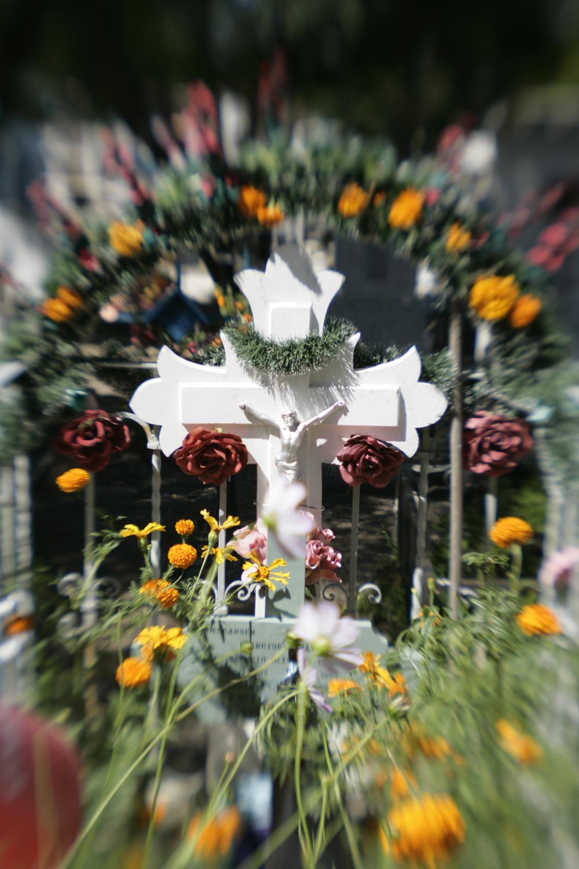 Cross:  Dia de los Muertos