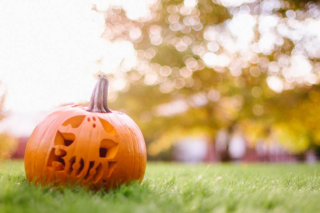 Pumpkin Fall Halloween Children's Lifestyle Photography Salt Lake City-19.jpg