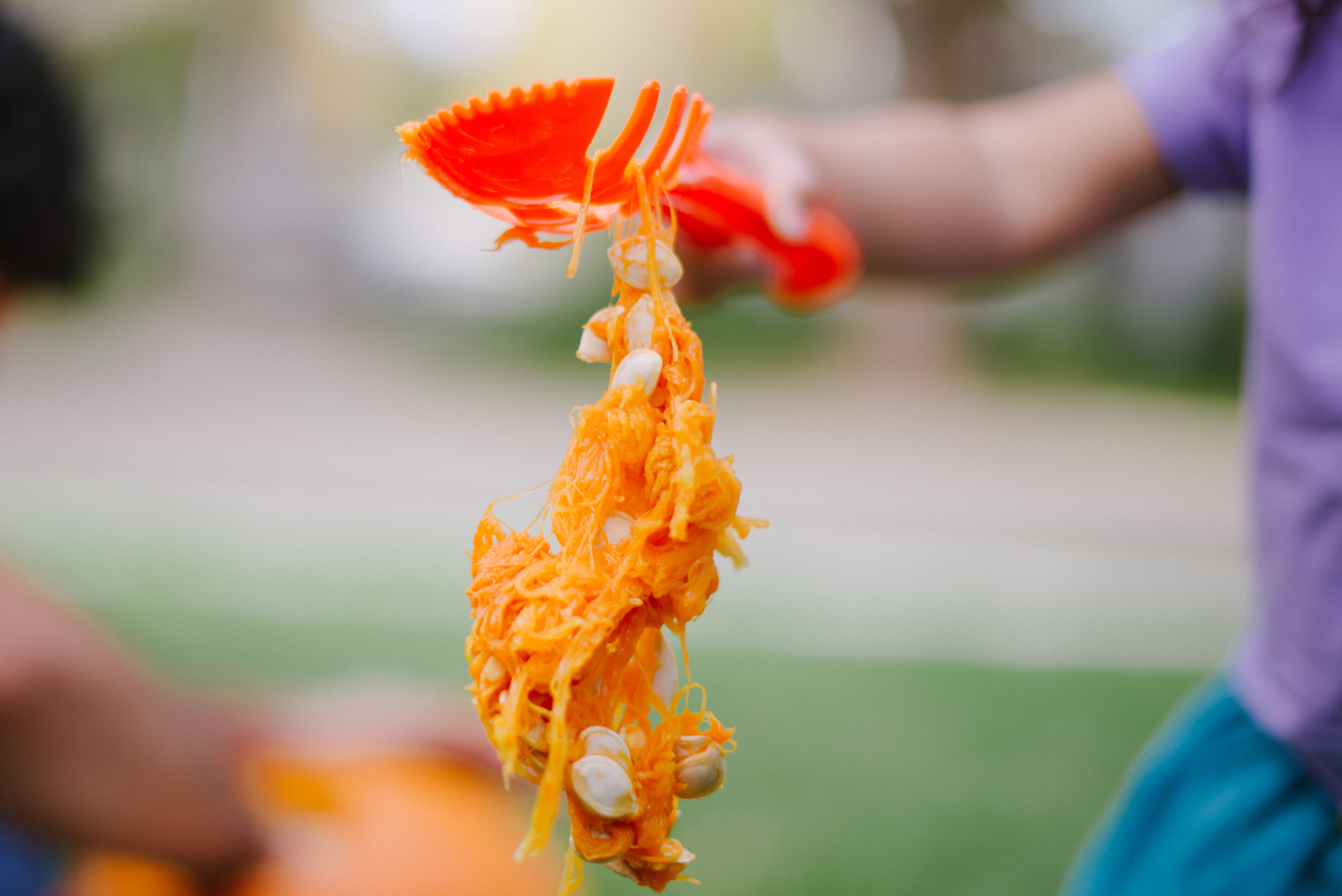 Pumpkin Fall Halloween Children's Lifestyle Photography Salt Lake City-7.jpg