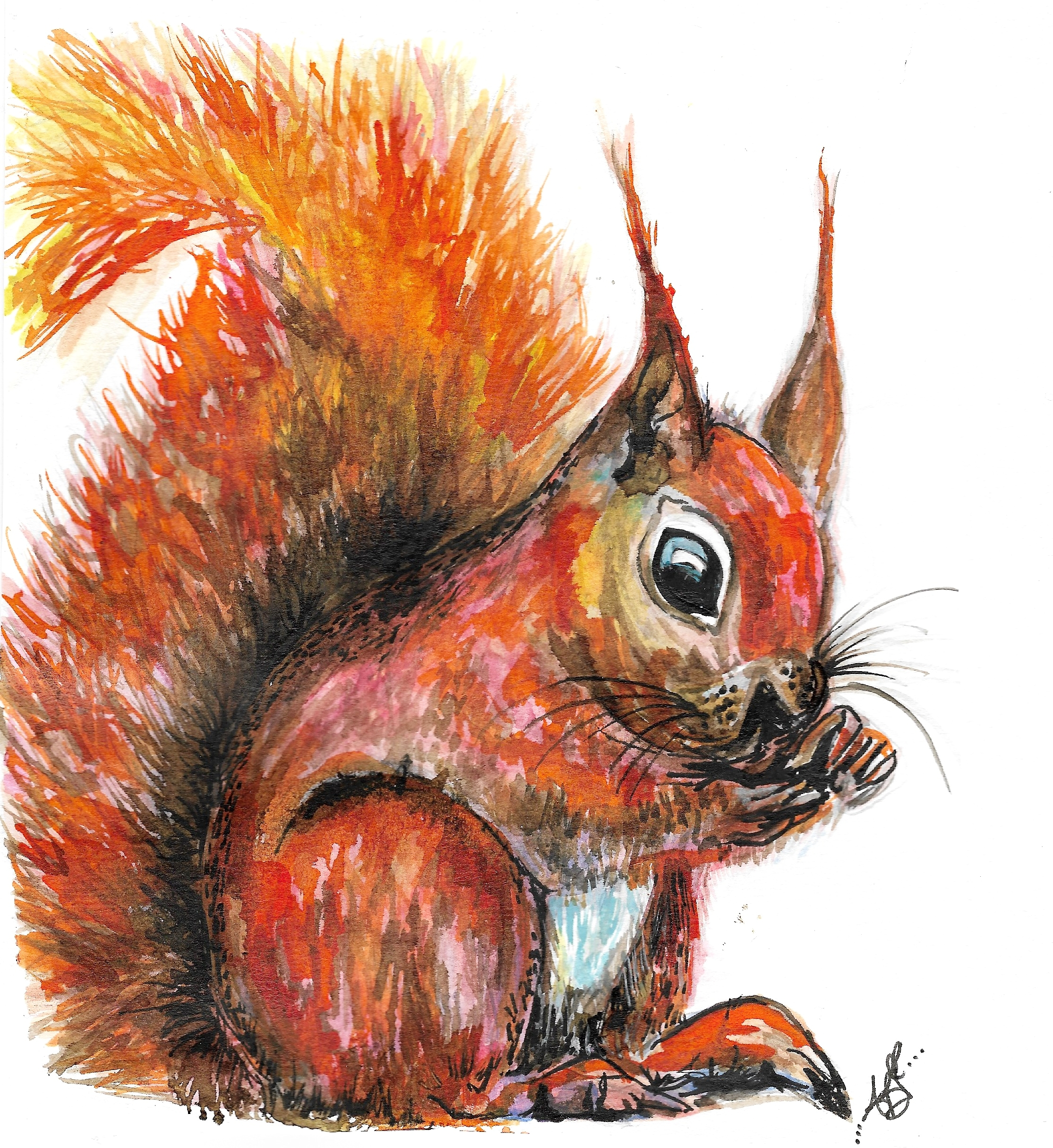 """""""Ruby-Roo the Red Squirrel"""" (2017)"""