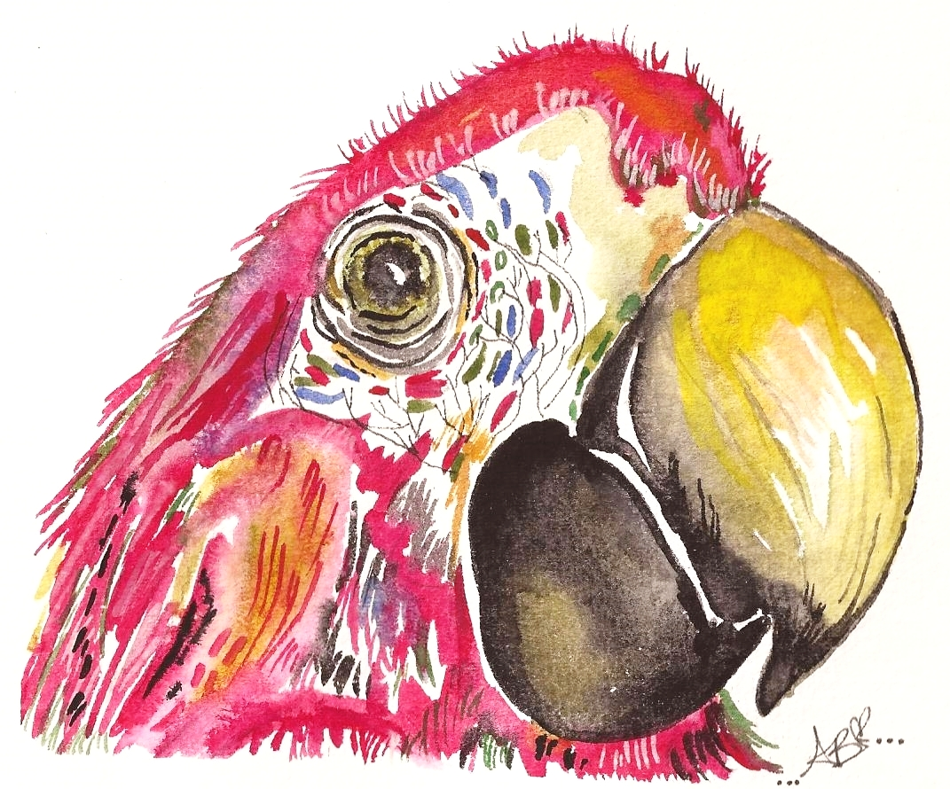 """""""The Parrot of Paradise"""" (2015)"""