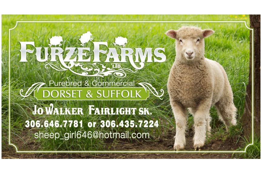 Furze Farms.png