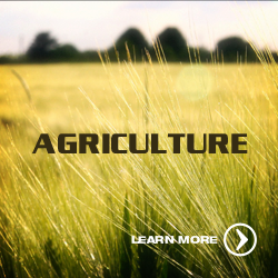 Solution_Block_Agriculture_250x250.png