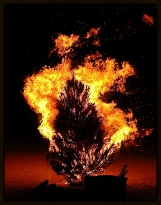Xmas tree on fire 2.jpg