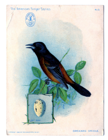 Image: A Singer Sewing Trading Card from 1898.