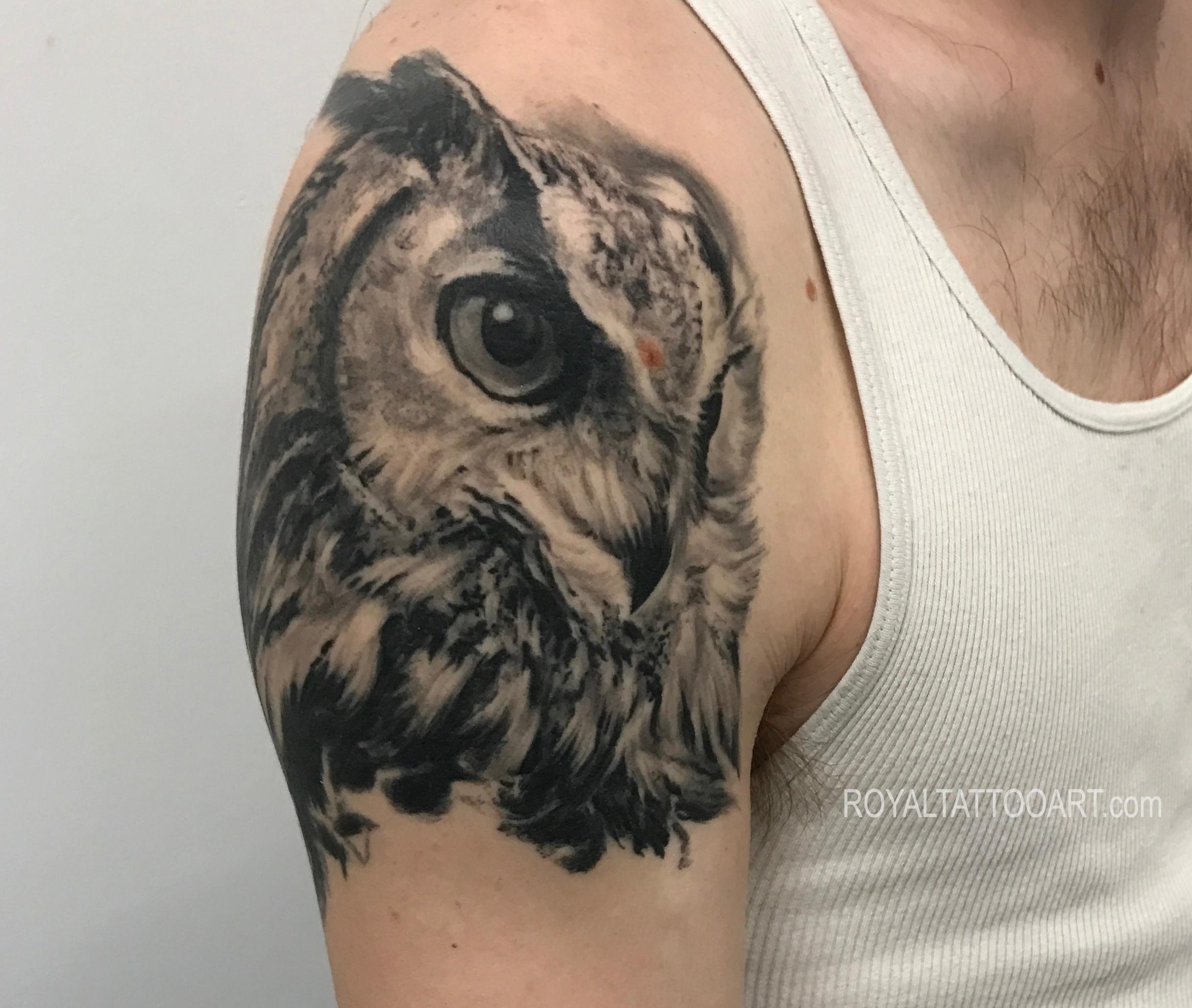 Healed owl portrat