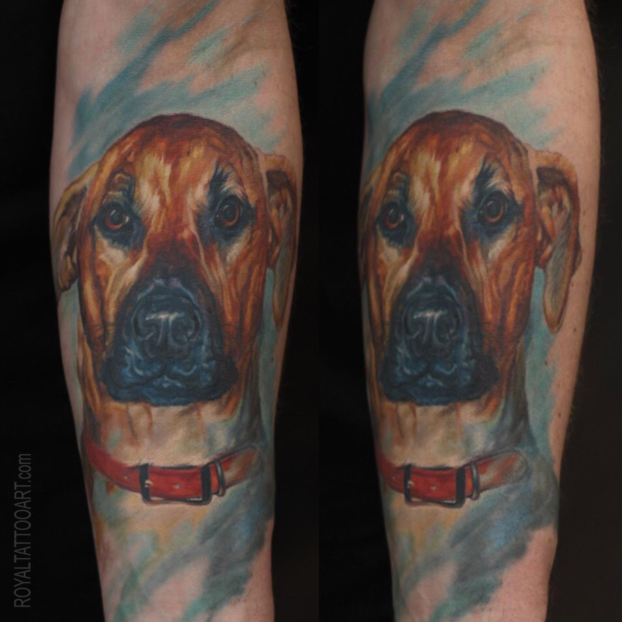 Memorial dog portrait color realistic boxer