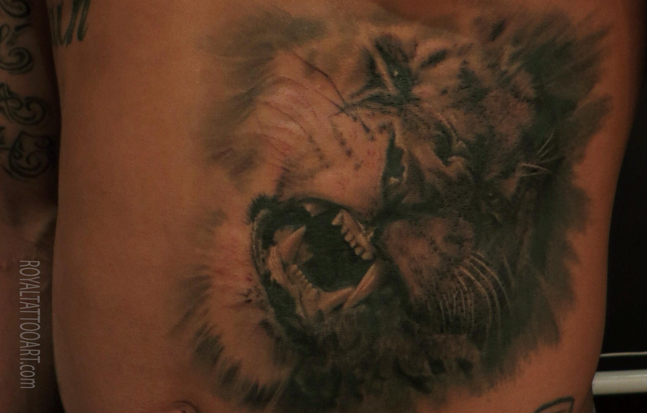 lion tattoo black and gray realism big storng powerfull  copy.jpg