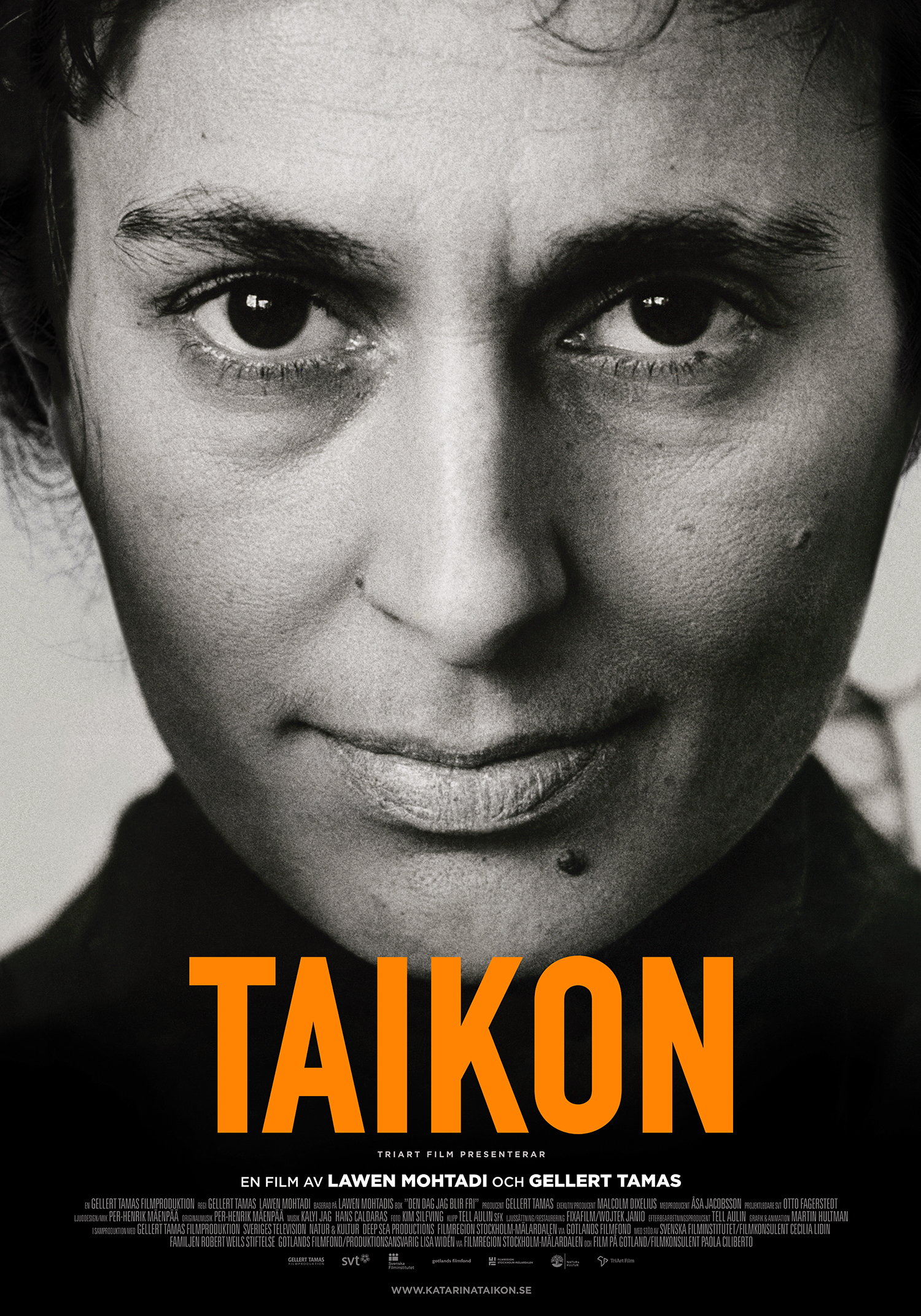 Taikon Official International Movie Poster