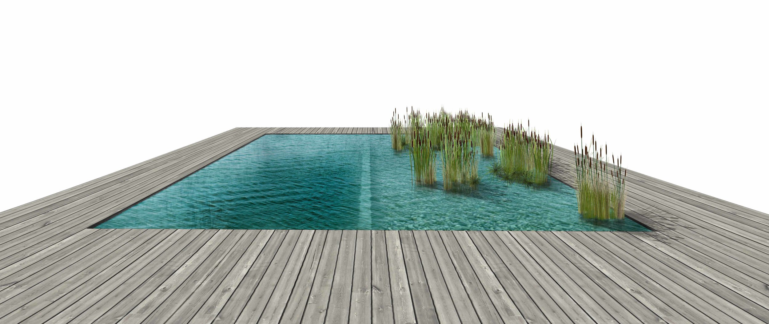 Alex Goad Natural Pool with Deck2.jpg
