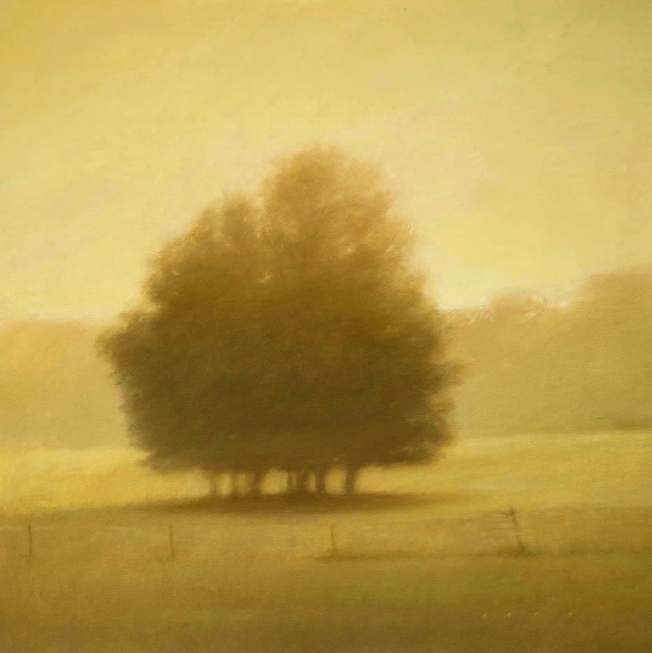 209013 Trees at Dawn- Bach 40x40.jpg