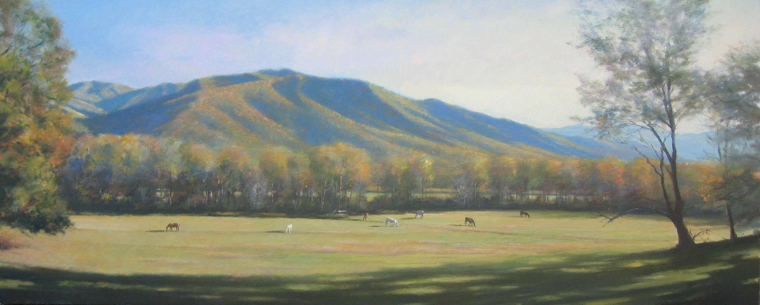 Mountain Home 20x50 Bach.jpg