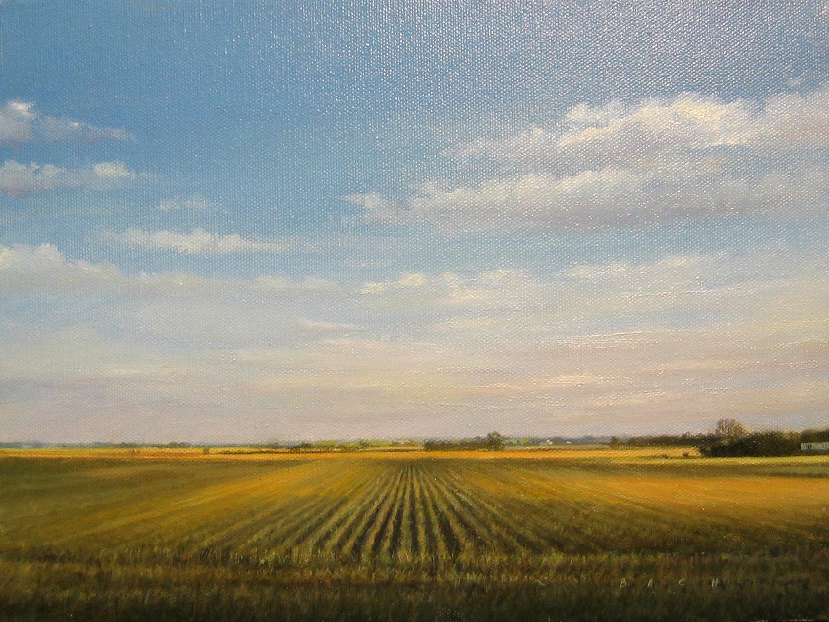 210037 Corn Rows 9x12.jpg