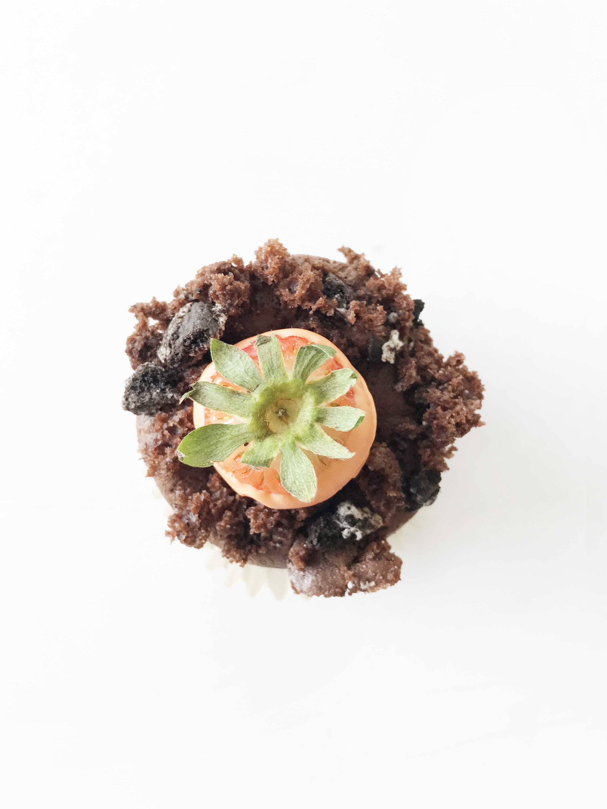 carrot-patch-cupcakes13.jpg