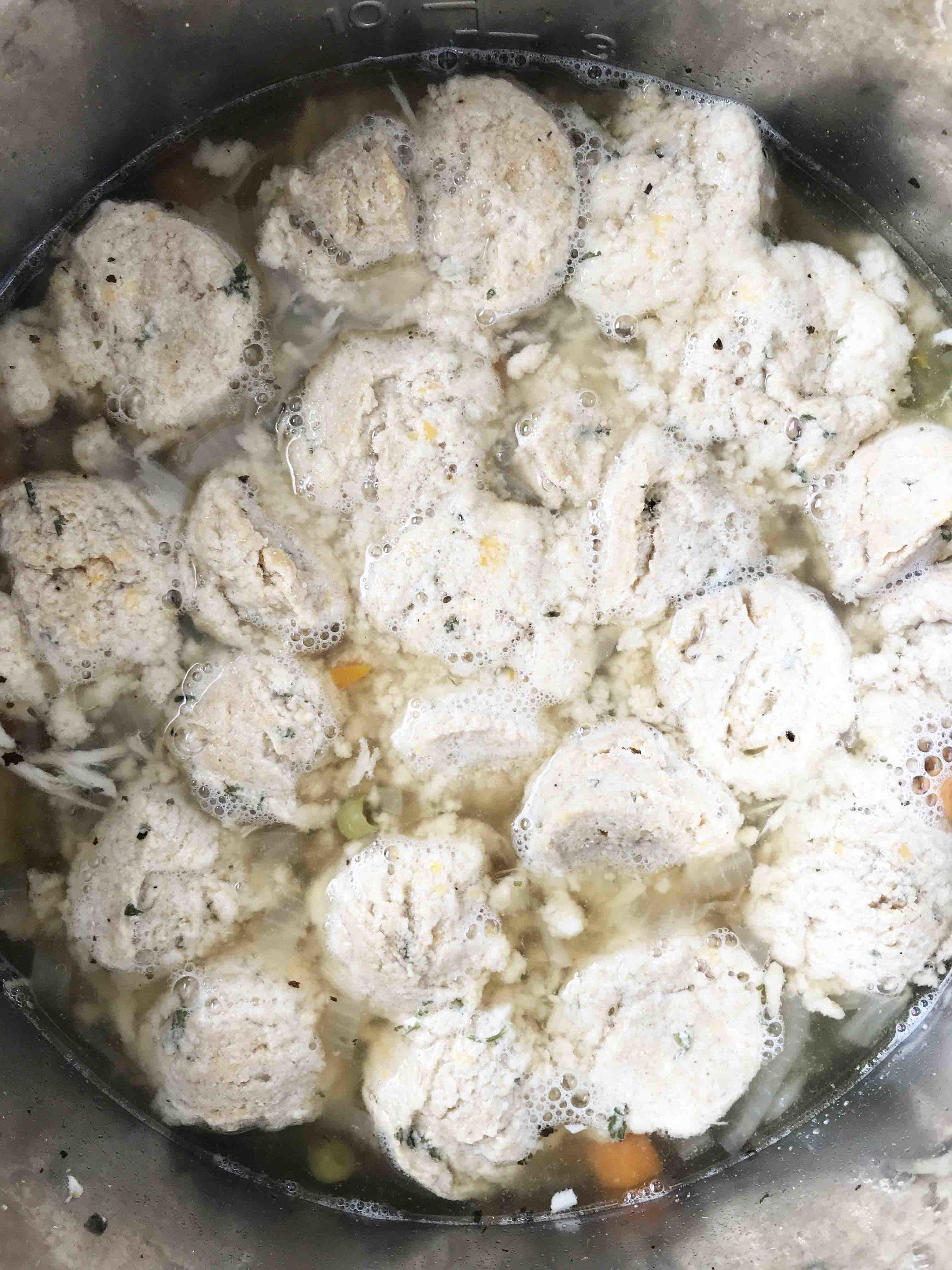 chicken-dumplings7.jpg